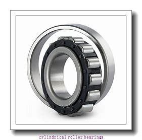 85 mm x 180 mm x 41 mm  NSK NUP317EM cylindrical roller bearings