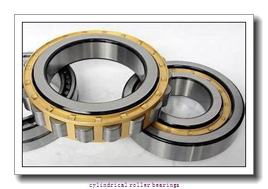 35 mm x 80 mm x 21 mm  Fersa N307FM cylindrical roller bearings