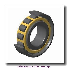 320 mm x 480 mm x 218 mm  IKO NAS 5064ZZ cylindrical roller bearings