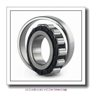 35 mm x 80 mm x 21 mm  Fersa NU307F cylindrical roller bearings