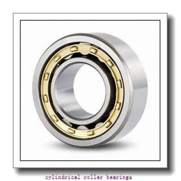 40 mm x 110 mm x 27 mm  NACHI NF 408 cylindrical roller bearings
