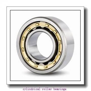 45 mm x 85 mm x 19 mm  NKE NJ209-E-TVP3 cylindrical roller bearings