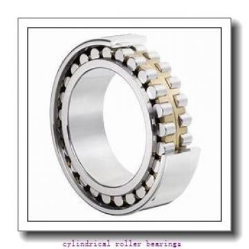 45 mm x 100 mm x 36 mm  NKE NU2309-E-MPA cylindrical roller bearings