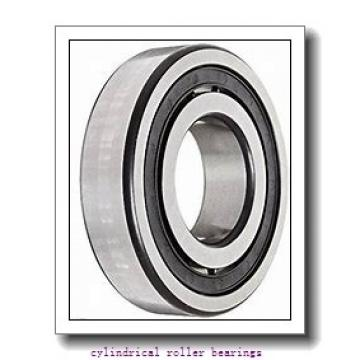 75 mm x 130 mm x 25 mm  FBJ NU215 cylindrical roller bearings