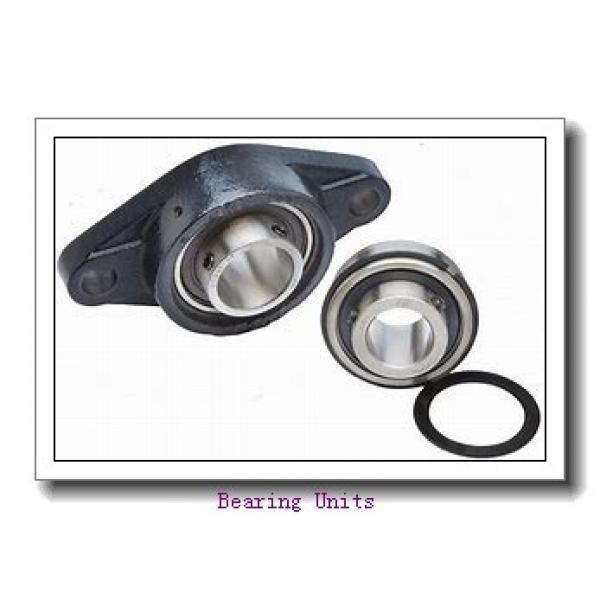 FYH NANFL208-24 bearing units #2 image