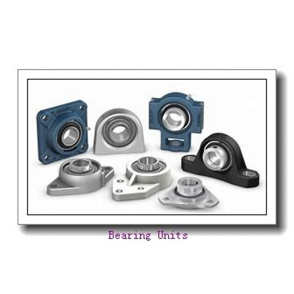 FYH NANFL208-24 bearing units #1 image