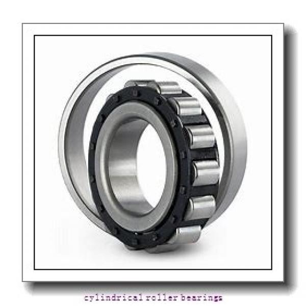 30 mm x 80 mm x 21 mm  Fersa F19078 cylindrical roller bearings #1 image