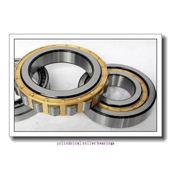 35 mm x 80 mm x 21 mm  Fersa N307FM cylindrical roller bearings #1 image