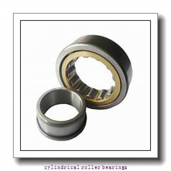 35 mm x 80 mm x 21 mm  Fersa N307FM cylindrical roller bearings #2 image